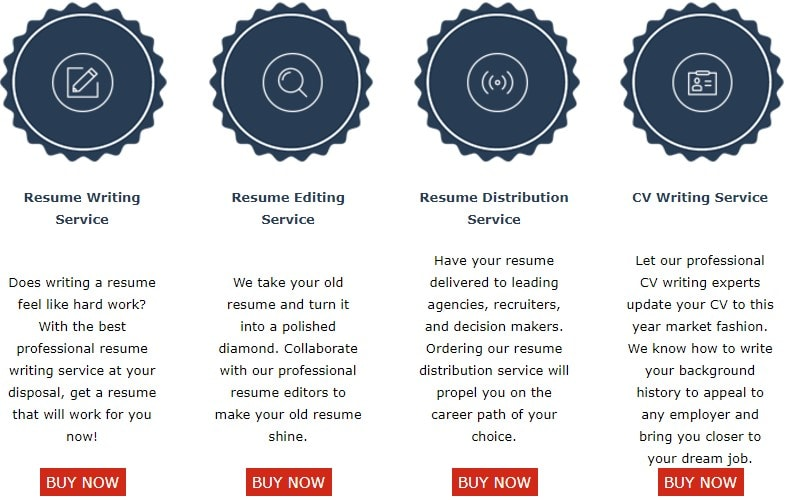 ResumeWritingService.biz services